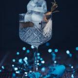 Realizzazione-Servizi-Fotografici-book-fotografici-Prato-Fotografia-Food-bartender-bar-21
